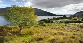 win a plot of land on skye