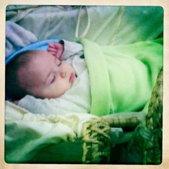 Thrifty Baby bedding