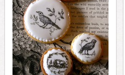 decorate cookies with rubber stamps