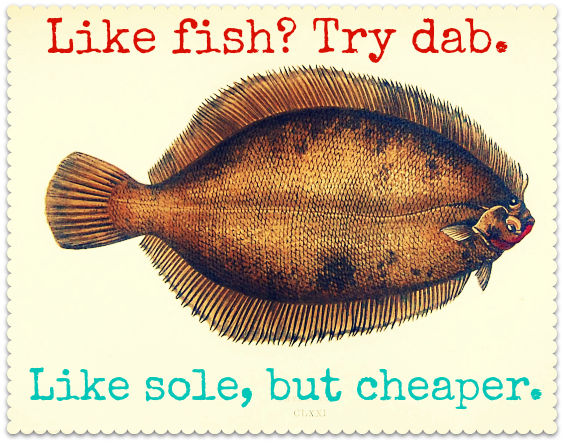 Image result for dab fish