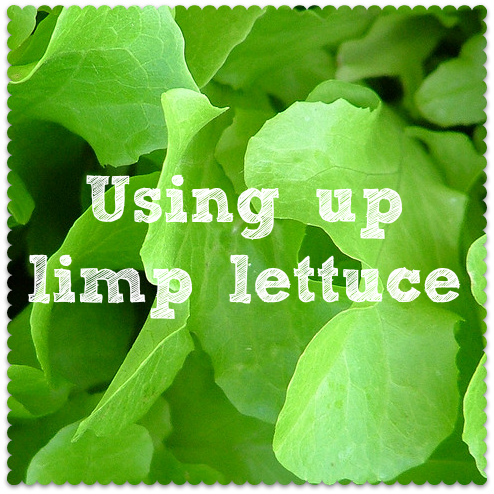 using up old lettuce